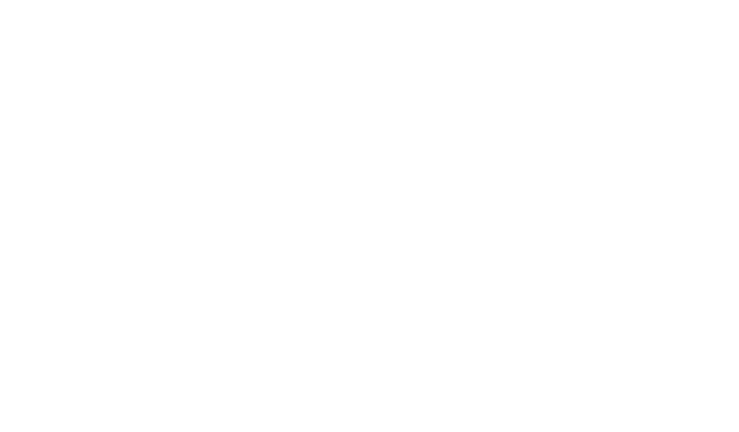 BeingFirst-Logo-FINAL(02-04)-white.png