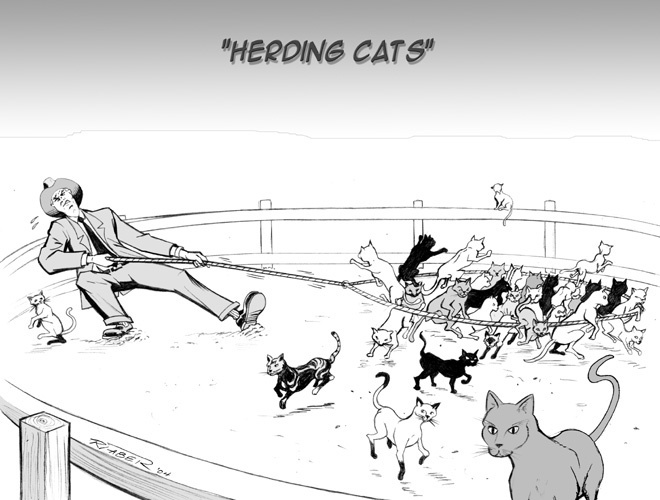 Is Leading Organizational Change Like Herding Cats? Creating an Integration Strategy when leading transformational change