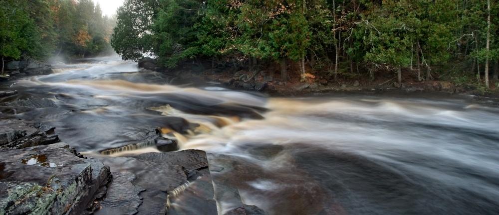 change_river_moving_forest.jpeg